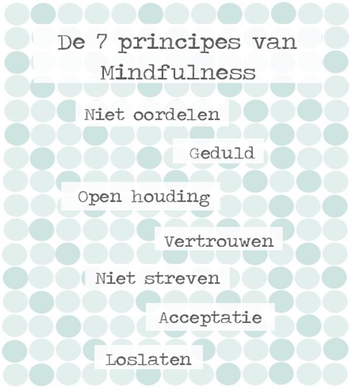De-7-principes-van-mindfulness